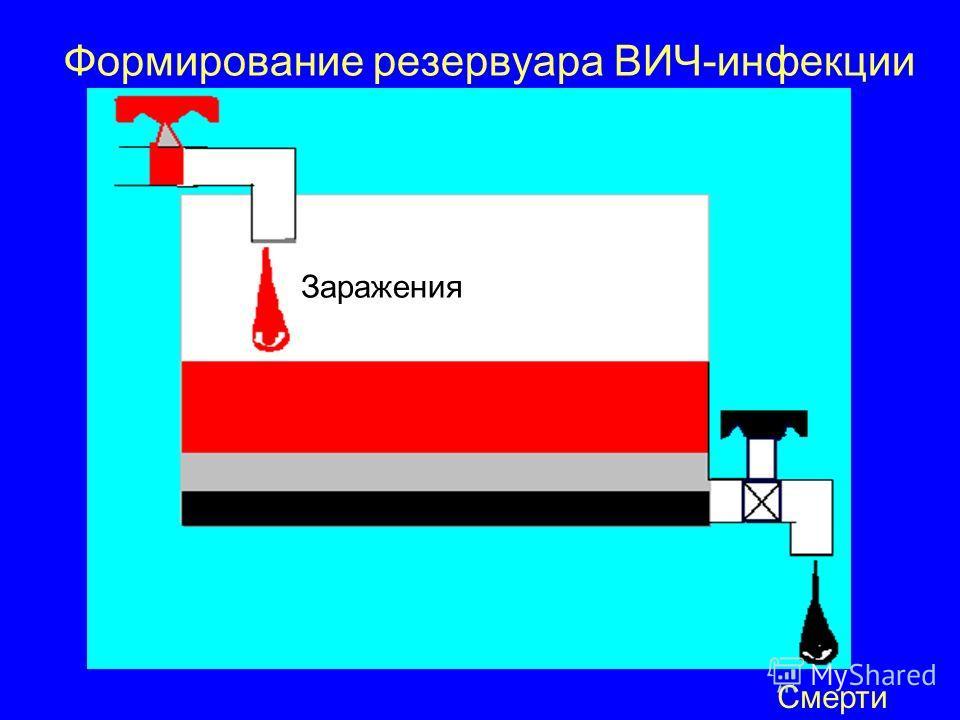 Формирование резервуара ВИЧ-инфекции Смерти Заражения