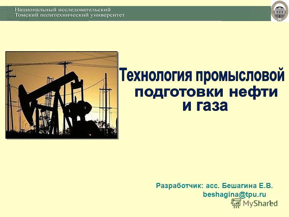 1 Разработчик: асс. Бешагина Е.В. beshagina@tpu.ru