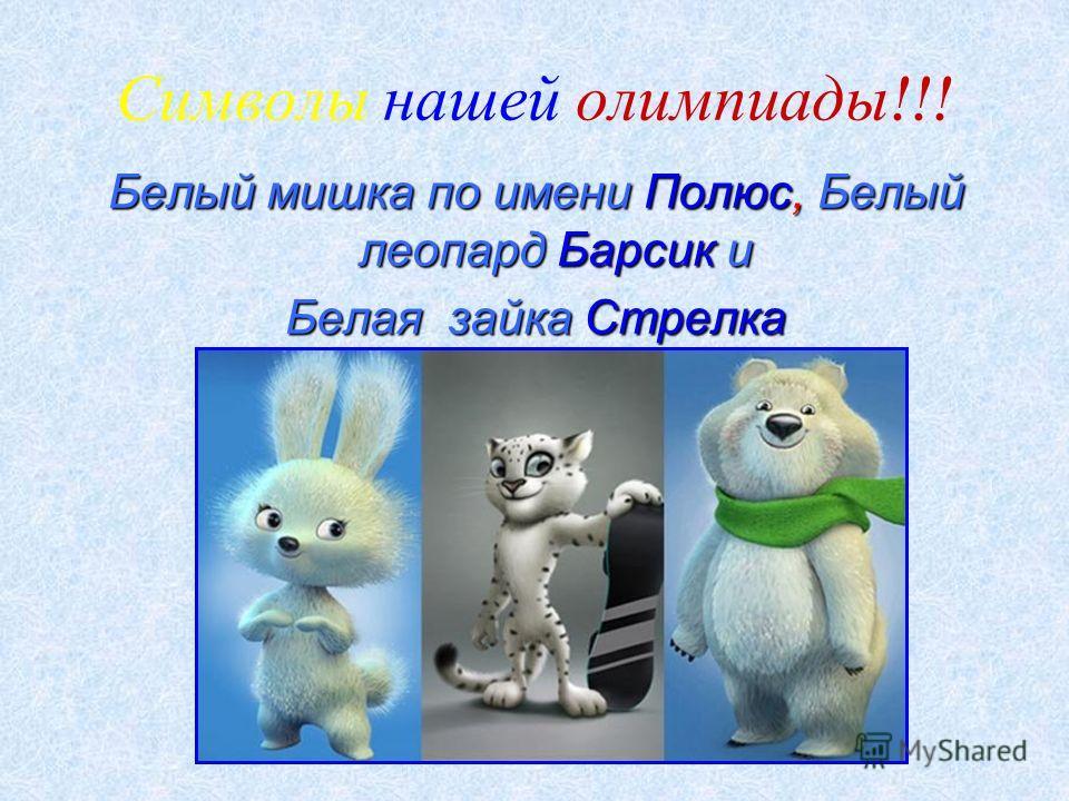 Символы нашей олимпиады !!! Белый мишка по имени Полюс, Белый леопард Барсик и Белая зайка Стрелка
