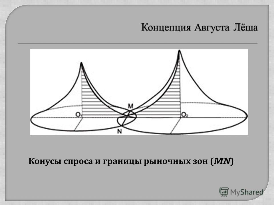 Конусы спроса и границы рыночных зон (MN)