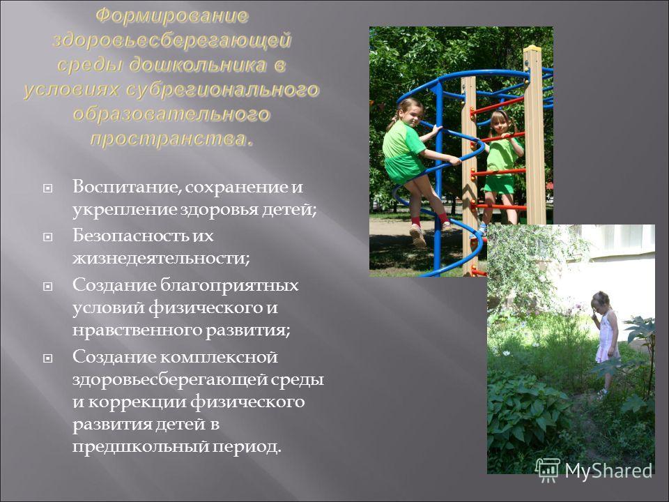 Воспитание, сохранение и укрепление здоровья детей; Безопасность их жизнедеятельности; Создание благоприятных условий физического и нравственного развития; Создание комплексной здоровьесберегающей среды и коррекции физического развития детей в предшк
