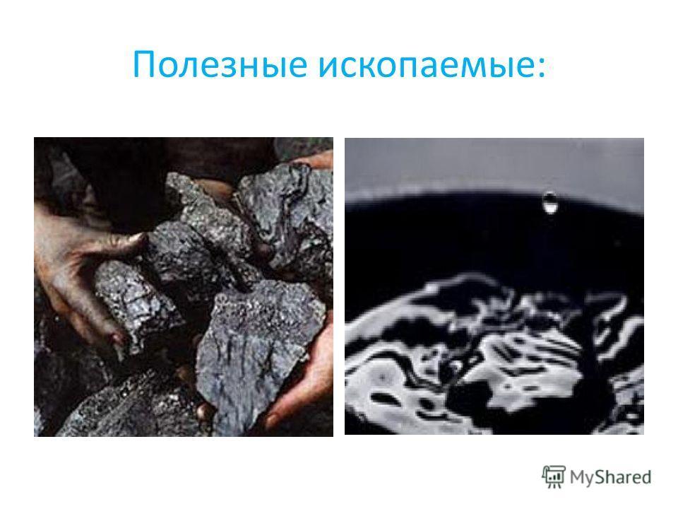 Полезные ископаемые: