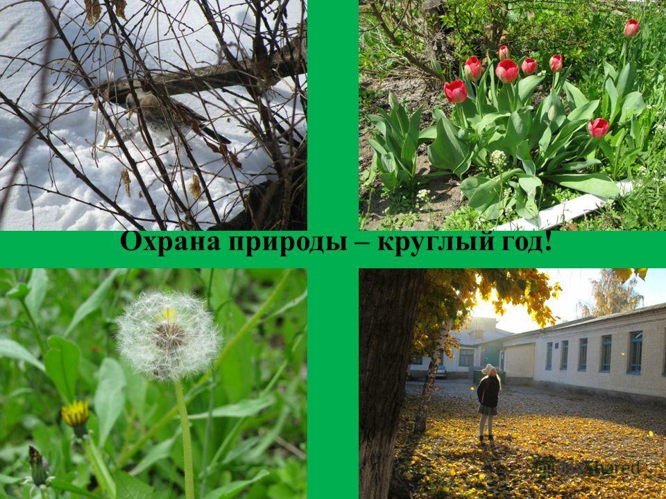 Охрана природы – круглый год!