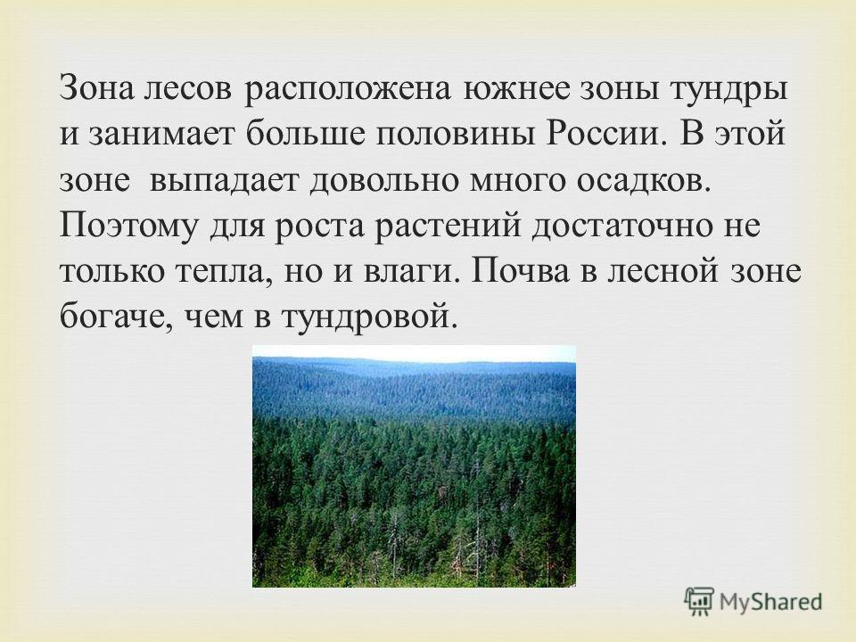 Зона лесов расположена южнее зоны тундры и занимает больше половины России. В этой зоне выпадает довольно много осадков. Поэтому для роста растений достаточно не только тепла, но и влаги. Почва в лесной зоне богаче, чем в тундровой.