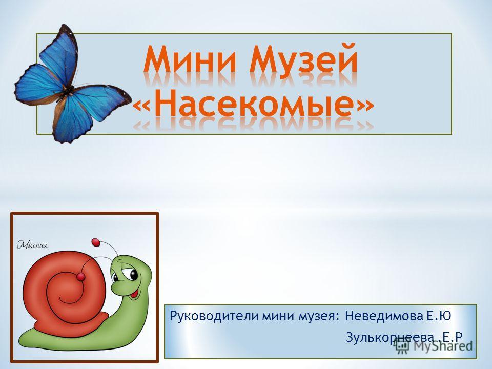 Руководители мини музея: Неведимова Е.Ю Зулькорнеева.Е.Р