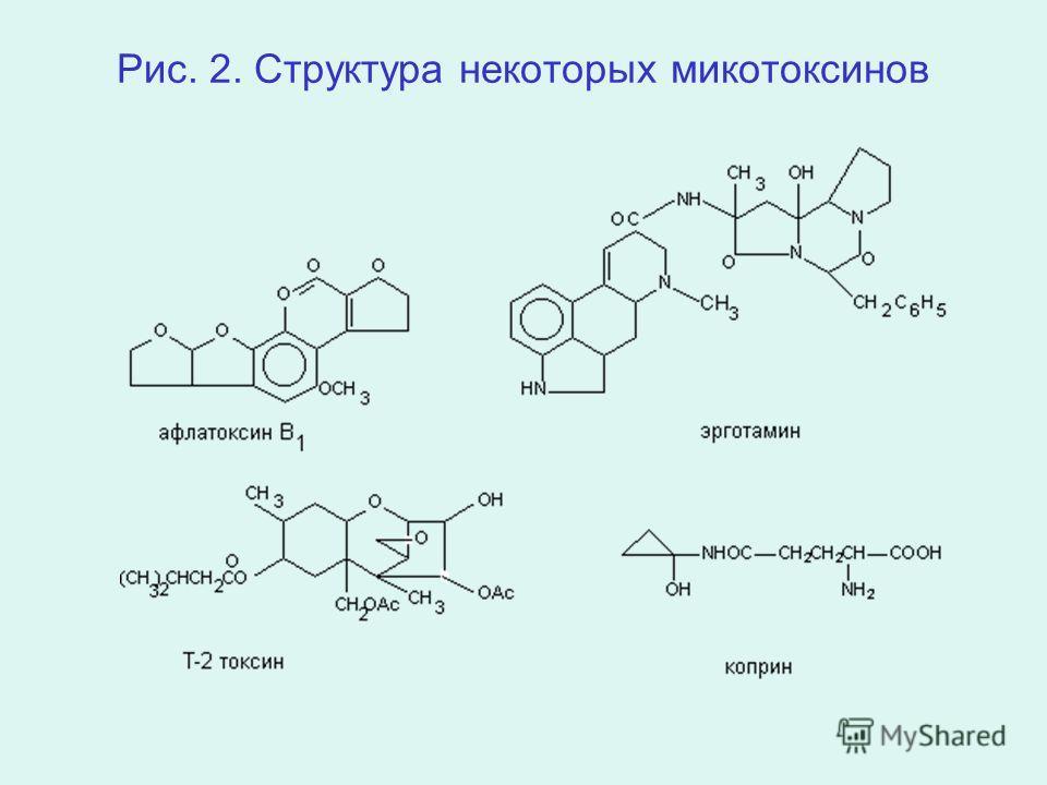 Рис. 2. Структура некоторых микотоксинов