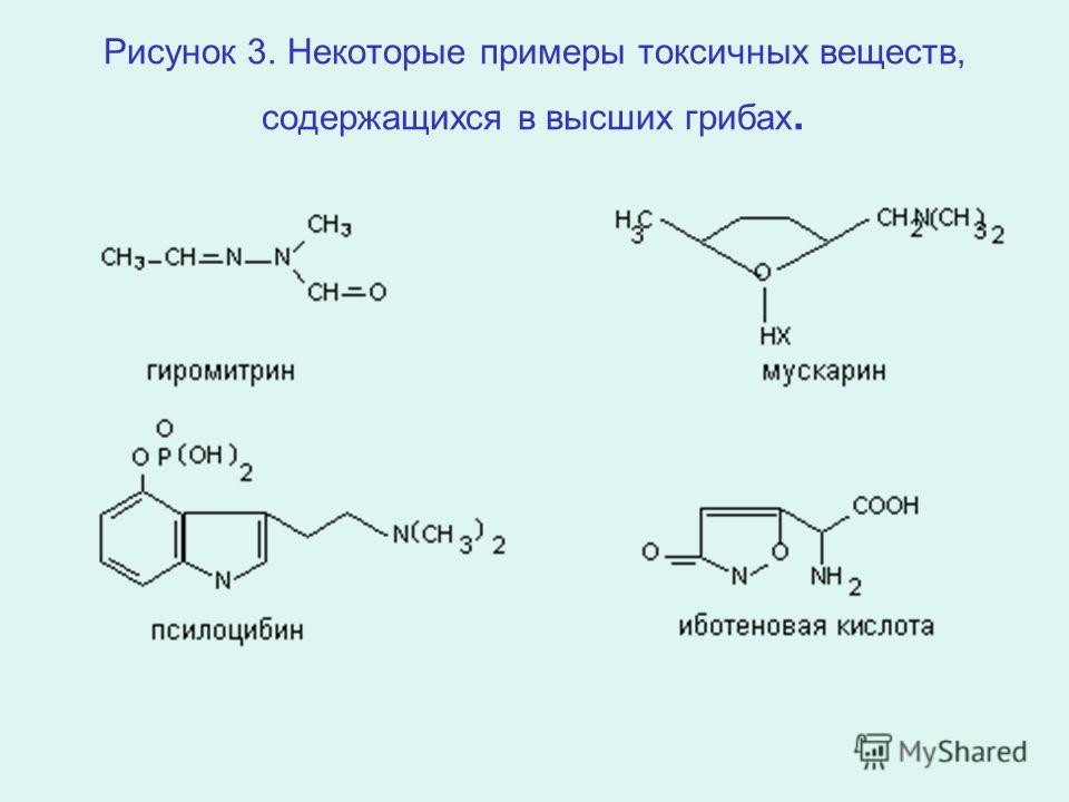Рисунок 3. Некоторые примеры токсичных веществ, содержащихся в высших грибах.