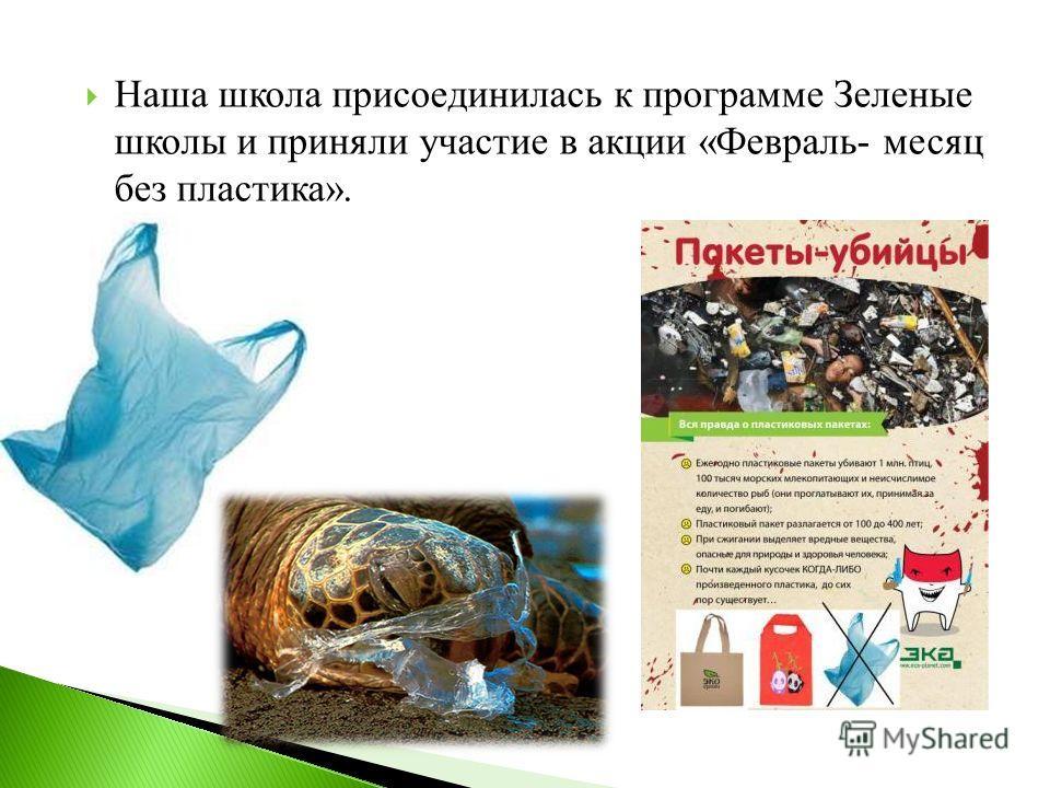 Наша школа присоединилась к программе Зеленые школы и приняли участие в акции «Февраль- месяц без пластика».