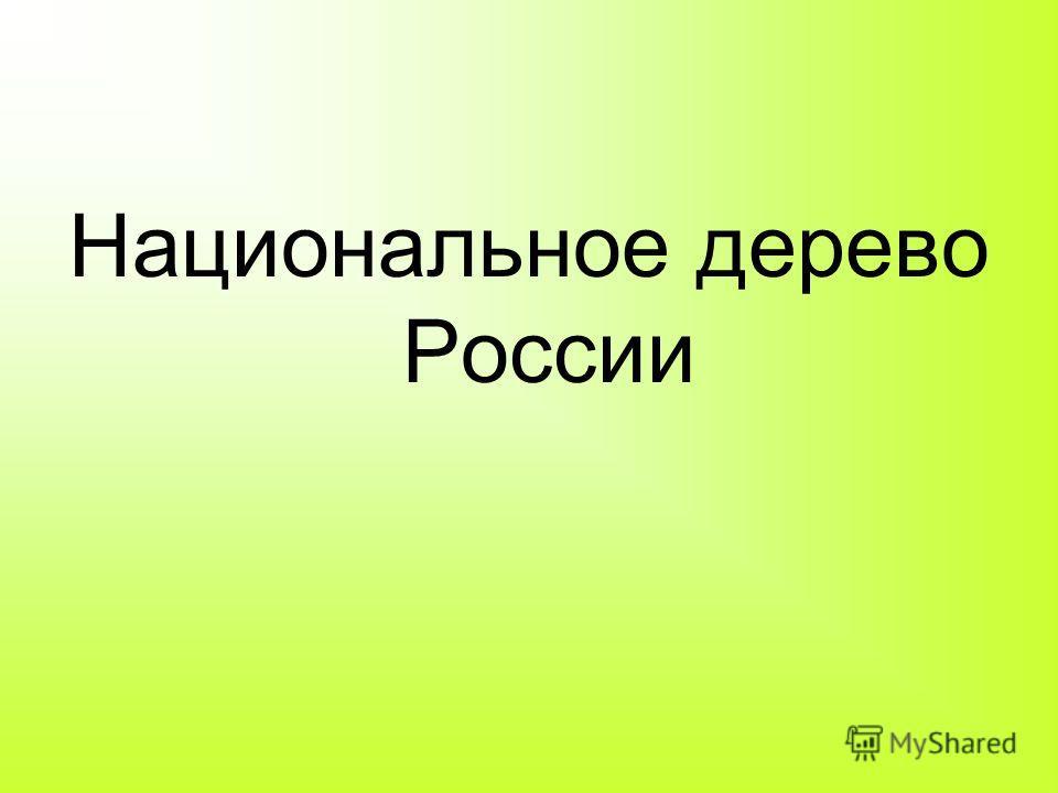 Национальное дерево России