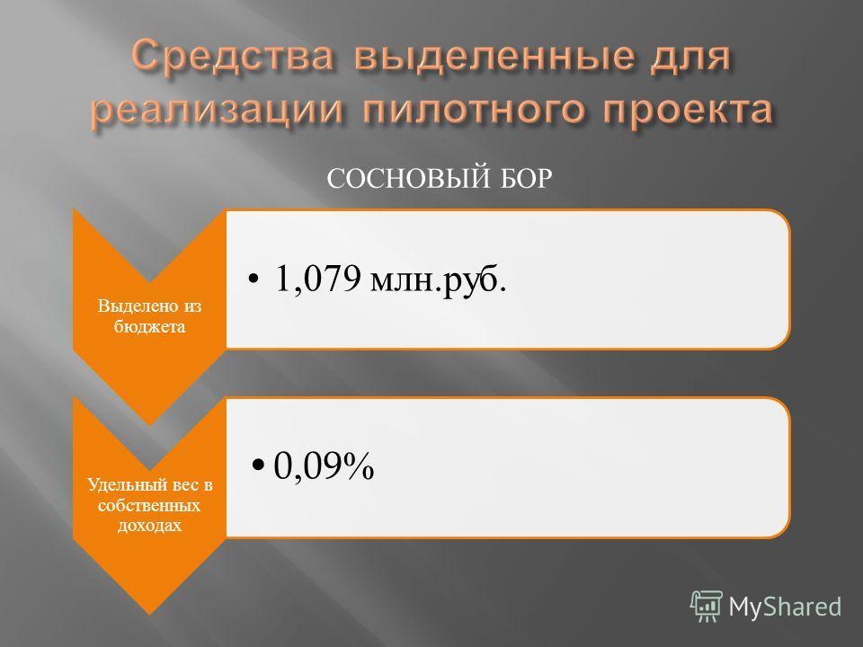 СОСНОВЫЙ БОР Выделено из бюджета 1,079 млн.руб. Удельный вес в собственных доходах 0,09%