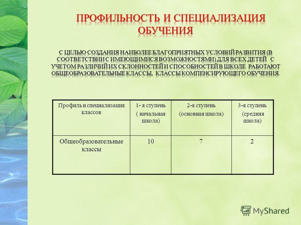 Профиль и специализация классов 1- я ступень ( начальная школа) 2-я ступень (основная школа) 3-я ступень (средняя школа) Общеобразовательные классы 1072