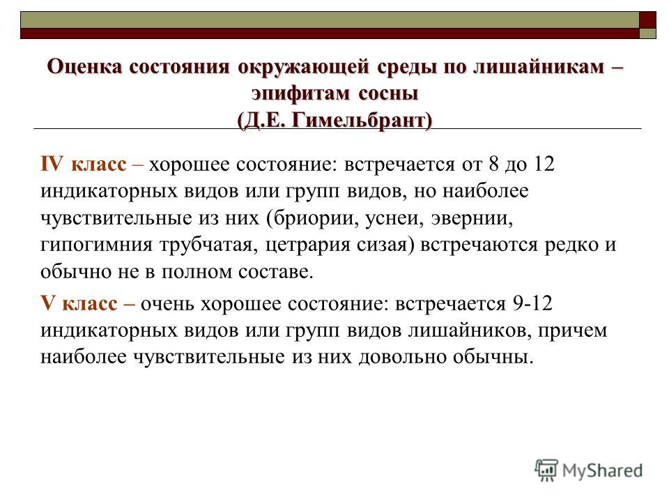 Оценка состояния окружающей среды по лишайникам – эпифитам сосны (Д.Е. Гимельбрант) IV класс – хорошее состояние: встречается от 8 до 12 индикаторных видов или групп видов, но наиболее чувствительные из них (бриории, уснеи, эвернии, гипогимния трубча