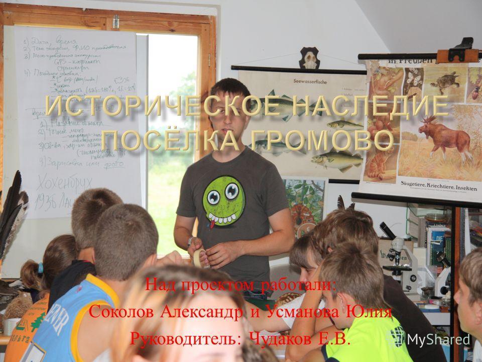 Над проектом работали : Соколов Александр и Усманова Юлия Руководитель : Чудаков Е. В.