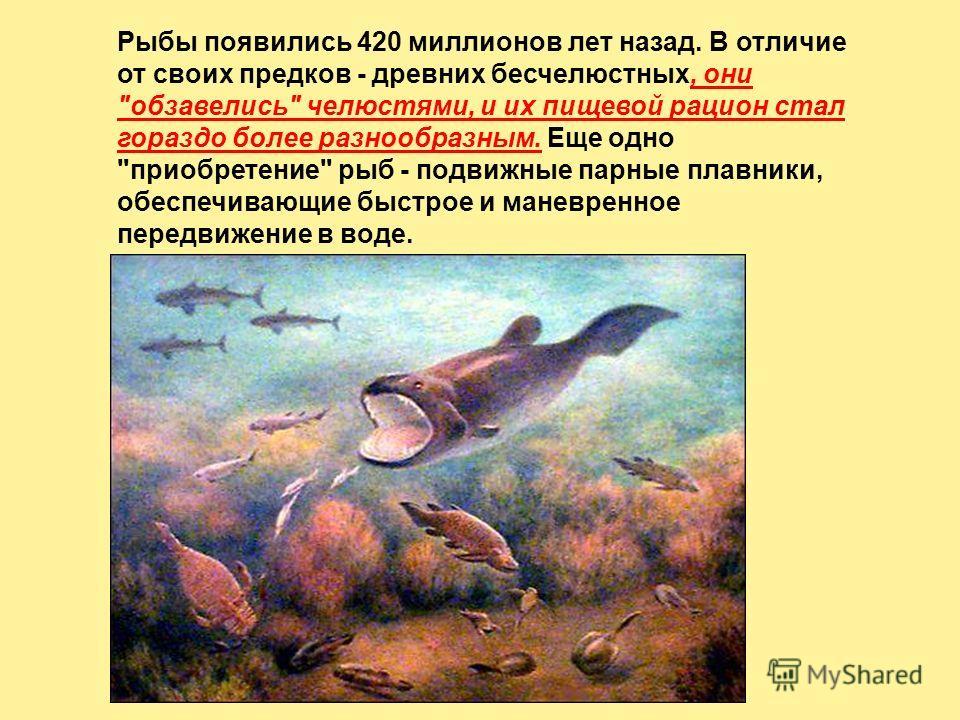 Рыбы появились 420 миллионов лет назад. В отличие от своих предков - древних бесчелюстных, они