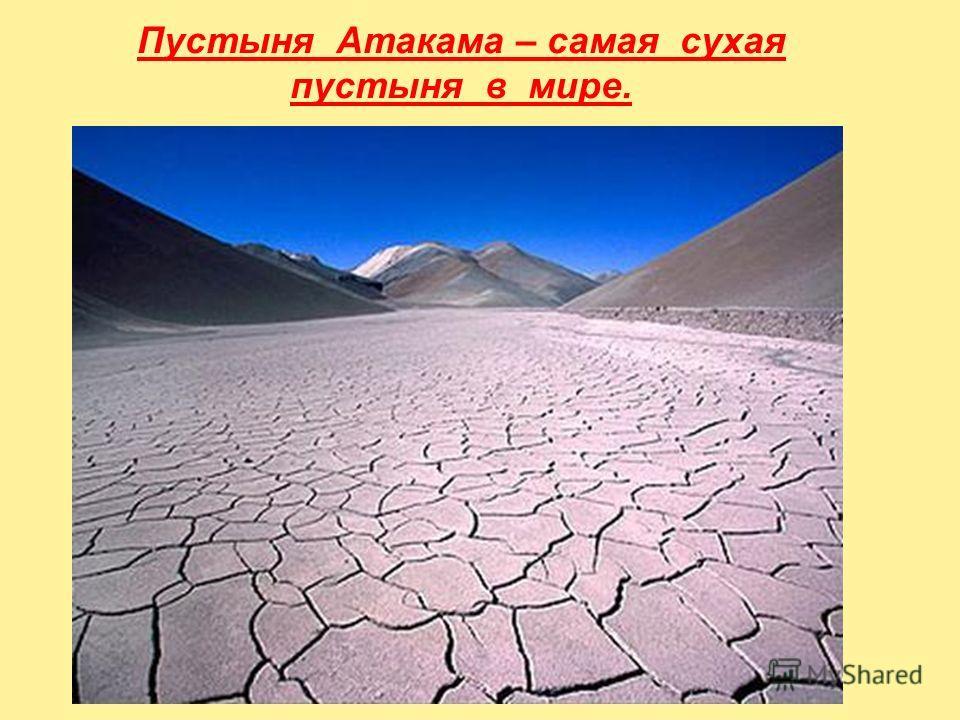 Пустыня Атакама – самая сухая пустыня в мире.