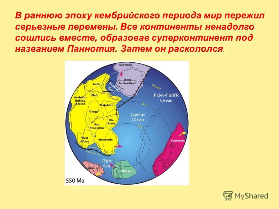 В раннюю эпоху кембрийского периода мир пережил серьезные перемены. Все континенты ненадолго сошлись вместе, образовав суперконтинент под названием Паннотия. Затем он раскололся.