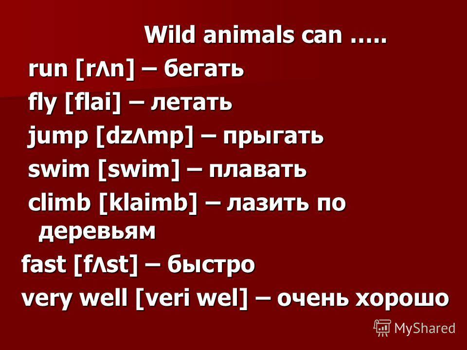 Wild animals can ….. Wild animals can ….. run [r Λ n] – бегать run [r Λ n] – бегать fly [flai] – летать fly [flai] – летать jump [dz Λ mp] – прыгать jump [dz Λ mp] – прыгать swim [swim] – плавать swim [swim] – плавать climb [klaimb] – лазить по дерев