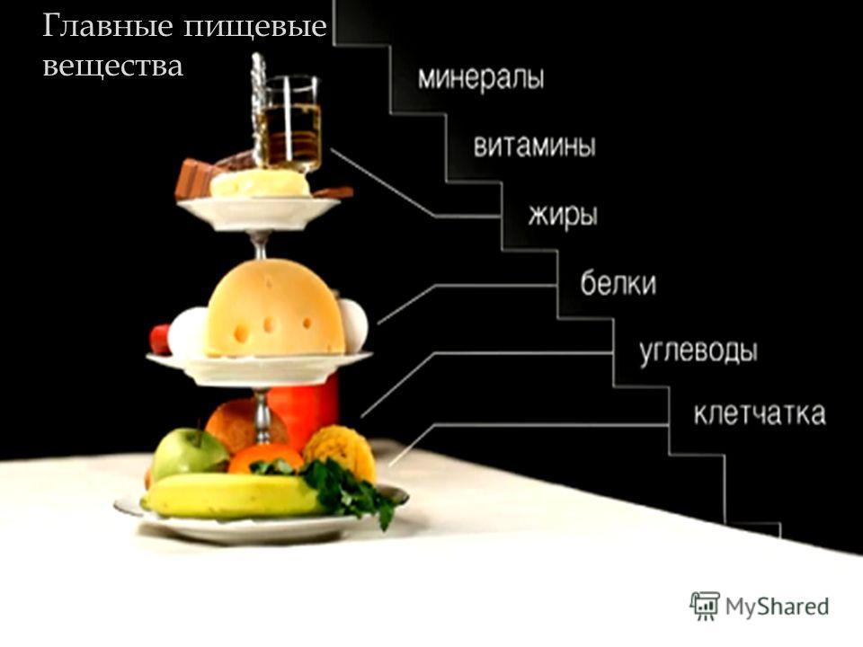 Главные пищевые вещества