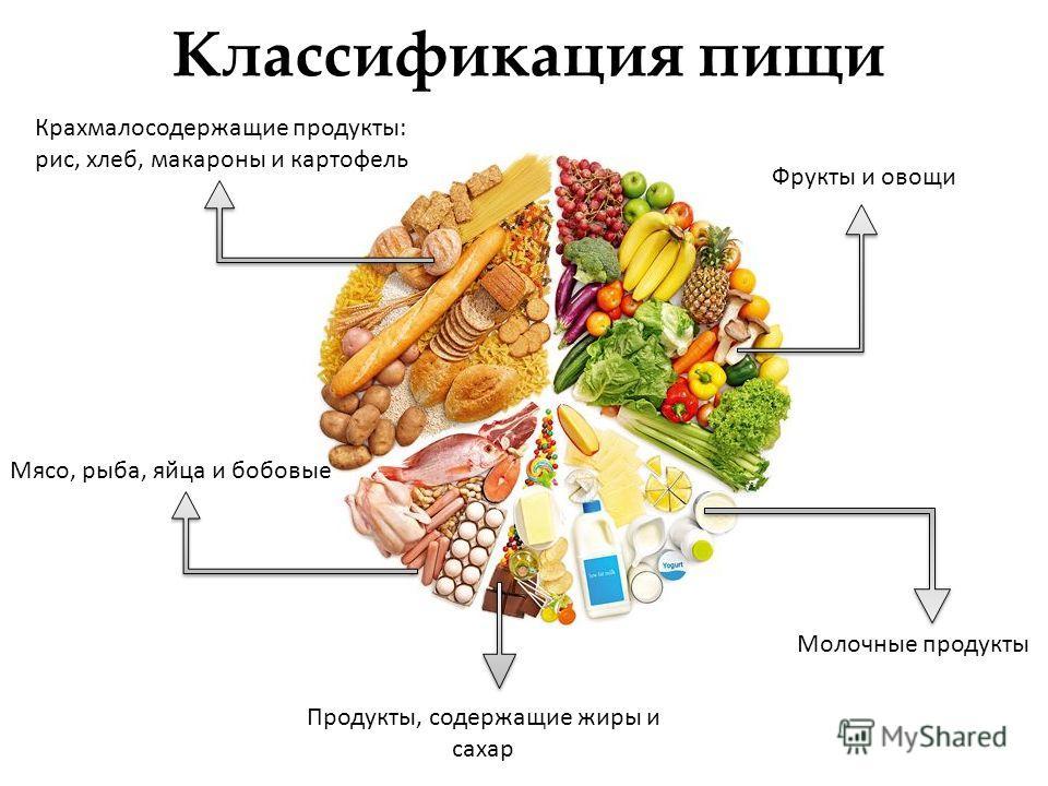 Классификация пищи Фрукты и овощи Молочные продукты Мясо, рыба, яйца и бобовые Крахмалосодержащие продукты: рис, хлеб, макароны и картофель Продукты, содержащие жиры и сахар