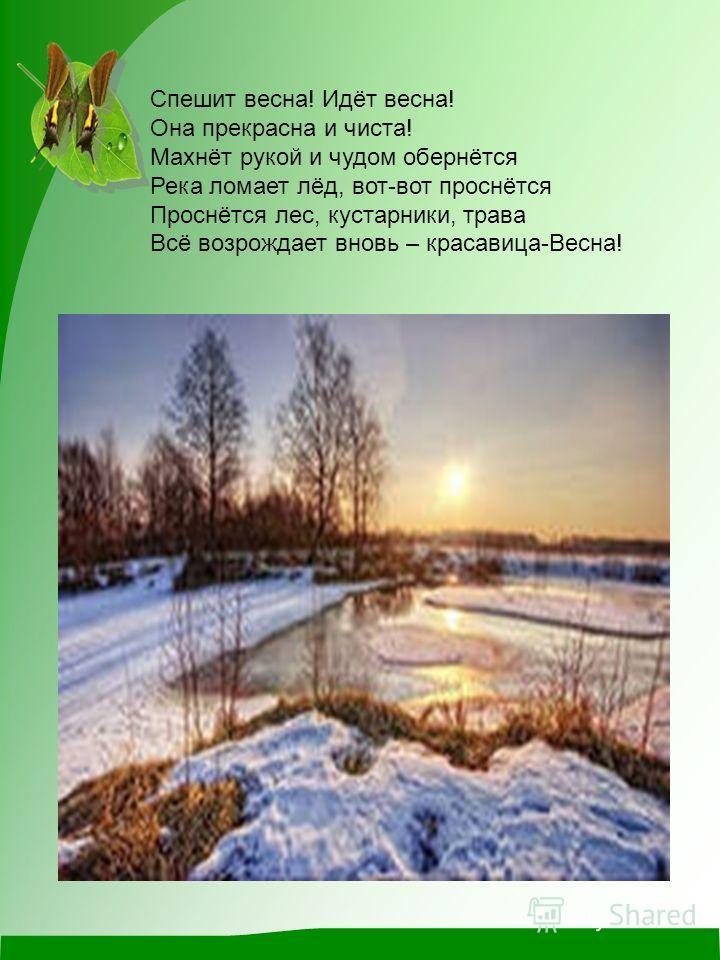 Спешит весна! Идёт весна! Она прекрасна и чиста! Махнёт рукой и чудом обернётся Река ломает лёд, вот-вот проснётся Проснётся лес, кустарники, трава Всё возрождает вновь – красавица-Весна!