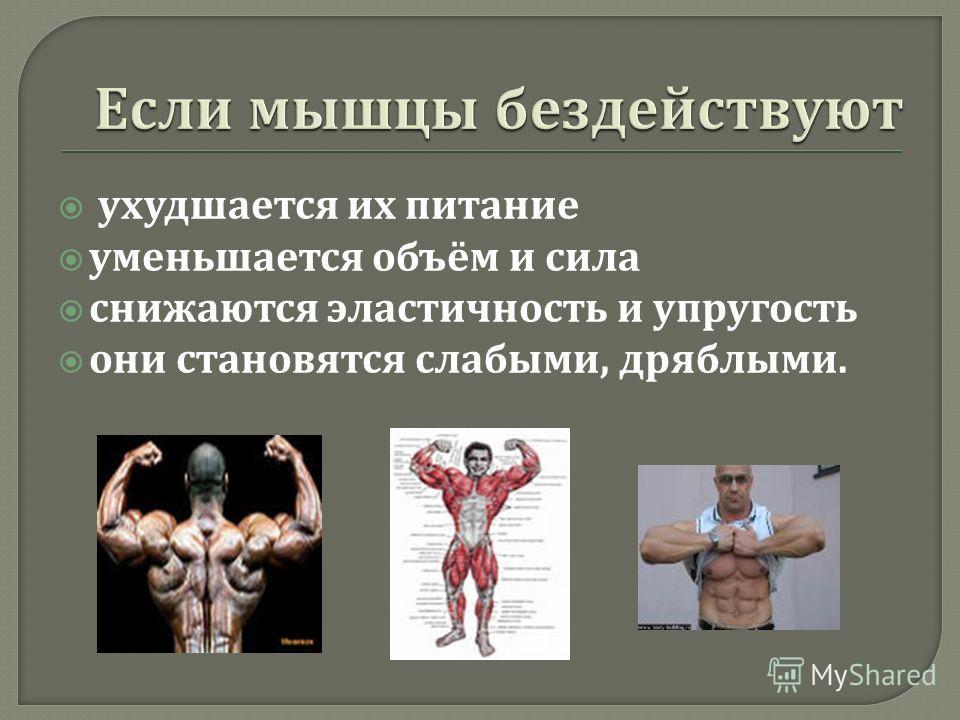 ухудшается их питание уменьшается объём и сила снижаются эластичность и упругость они становятся слабыми, дряблыми.