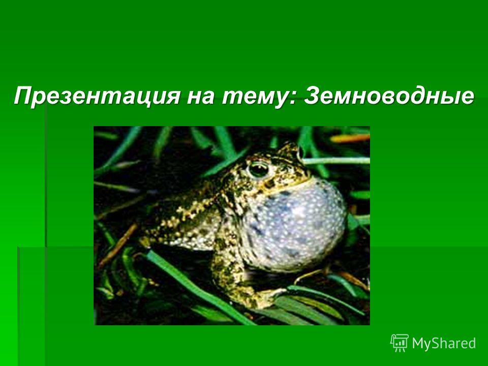 Презентация на тему: Земноводные