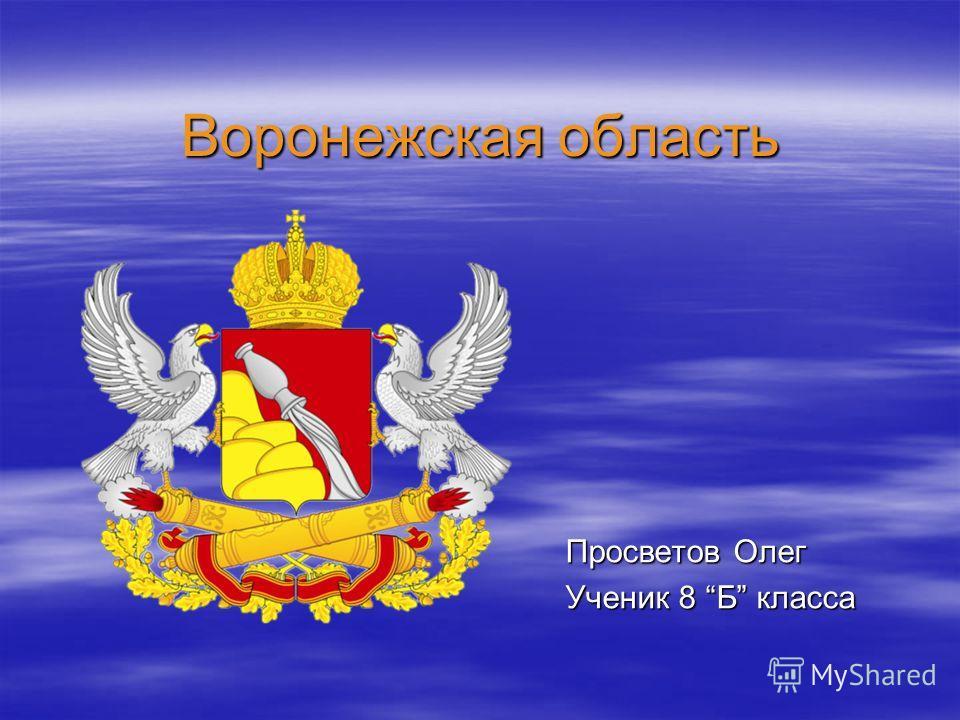 Воронежская область Просветов Олег Ученик 8 Б класса