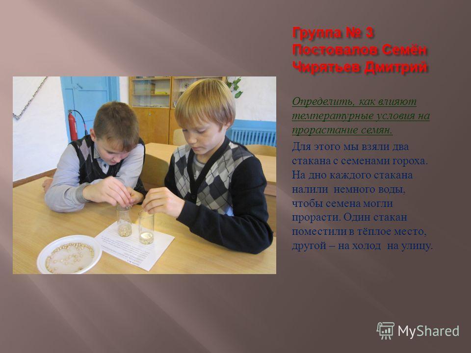 Группа 3 Постовалов Семён Чирятьев Дмитрий Определить, как влияют температурные условия на прорастание семян. Для этого мы взяли два стакана с семенами гороха. На дно каждого стакана налили немного воды, чтобы семена могли прорасти. Один стакан помес