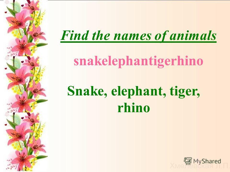 Find the names of animals snakelephantigerhino Snake, elephant, tiger, rhino