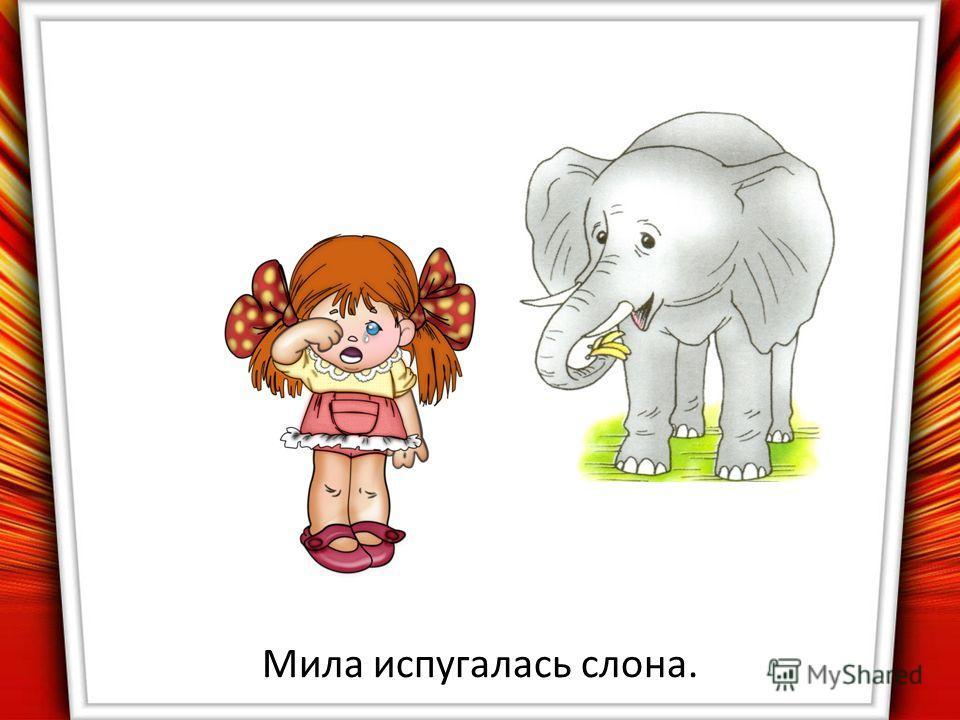 Мила испугалась слона.