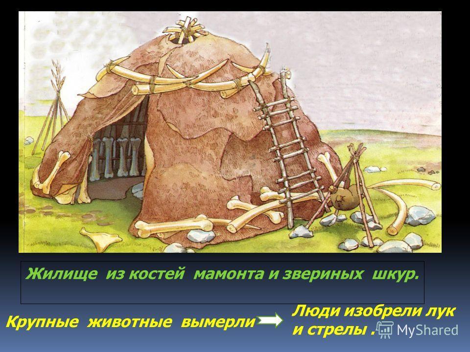 Жилище из костей мамонта и звериных шкур. Крупные животные вымерли Люди изобрели лук и стрелы.