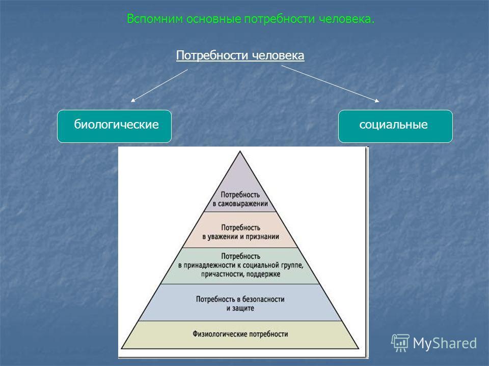 Потребности человека биологическиесоциальные Вспомним основные потребности человека.