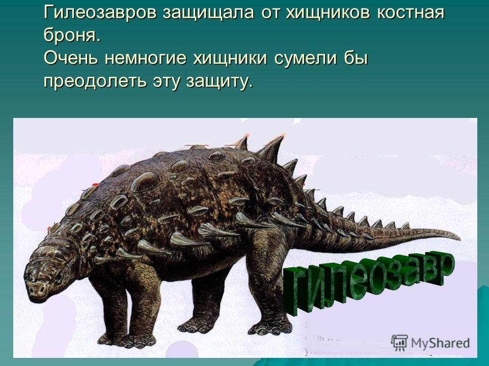 Гилеозавров защищала от хищников костная броня. Очень немногие хищники сумели бы преодолеть эту защиту.