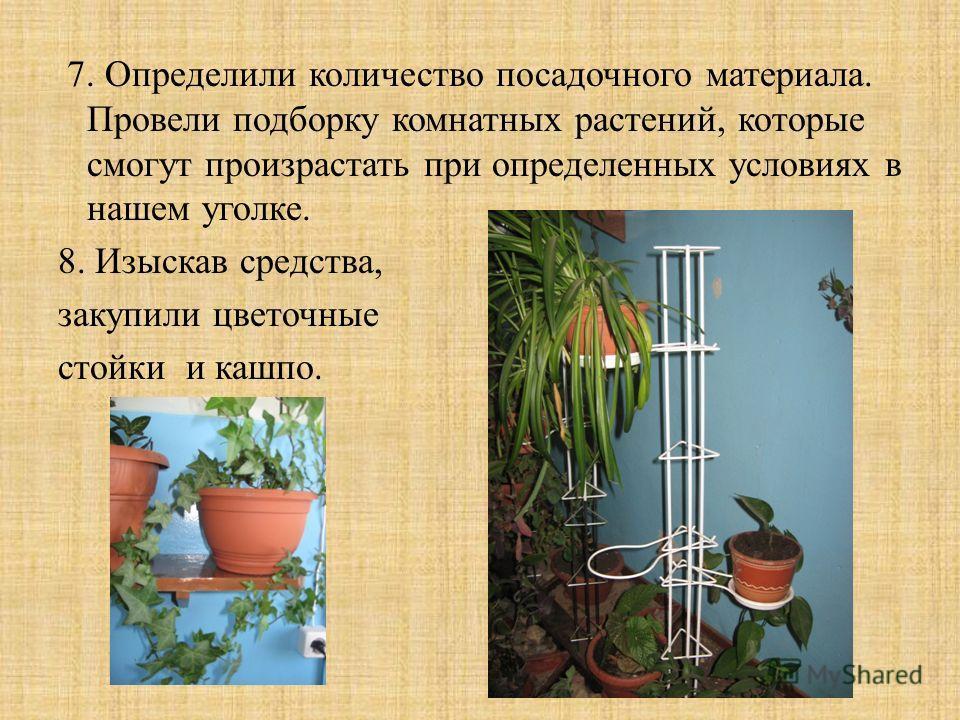 7. Определили количество посадочного материала. Провели подборку комнатных растений, которые смогут произрастать при определенных условиях в нашем уголке. 8. Изыскав средства, закупили цветочные стойки и кашпо.