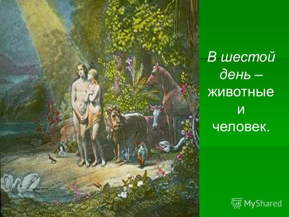В шестой день – животные и человек.