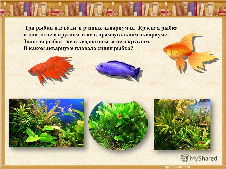 Три рыбки плавали в разных аквариумах. Красная рыбка плавала не в круглом и не в прямоугольном аквариуме. Золотая рыбка - не в квадратном и не в круглом. В каком аквариуме плавала синяя рыбка?