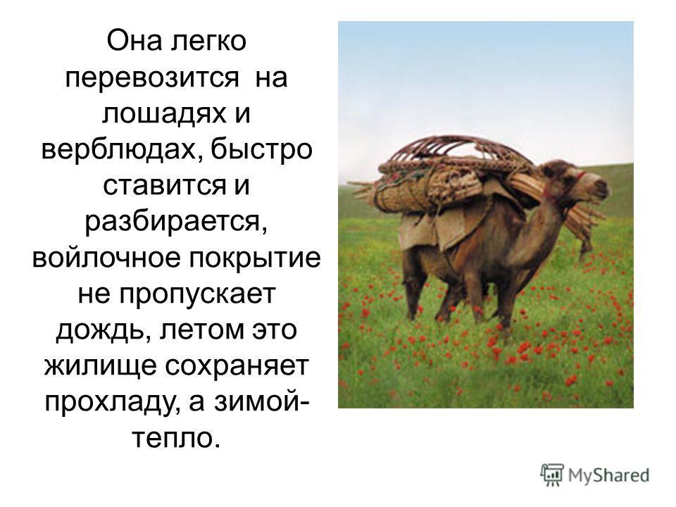 Она легко перевозится на лошадях и верблюдах, быстро ставится и разбирается, войлочное покрытие не пропускает дождь, летом это жилище сохраняет прохладу, а зимой- тепло.