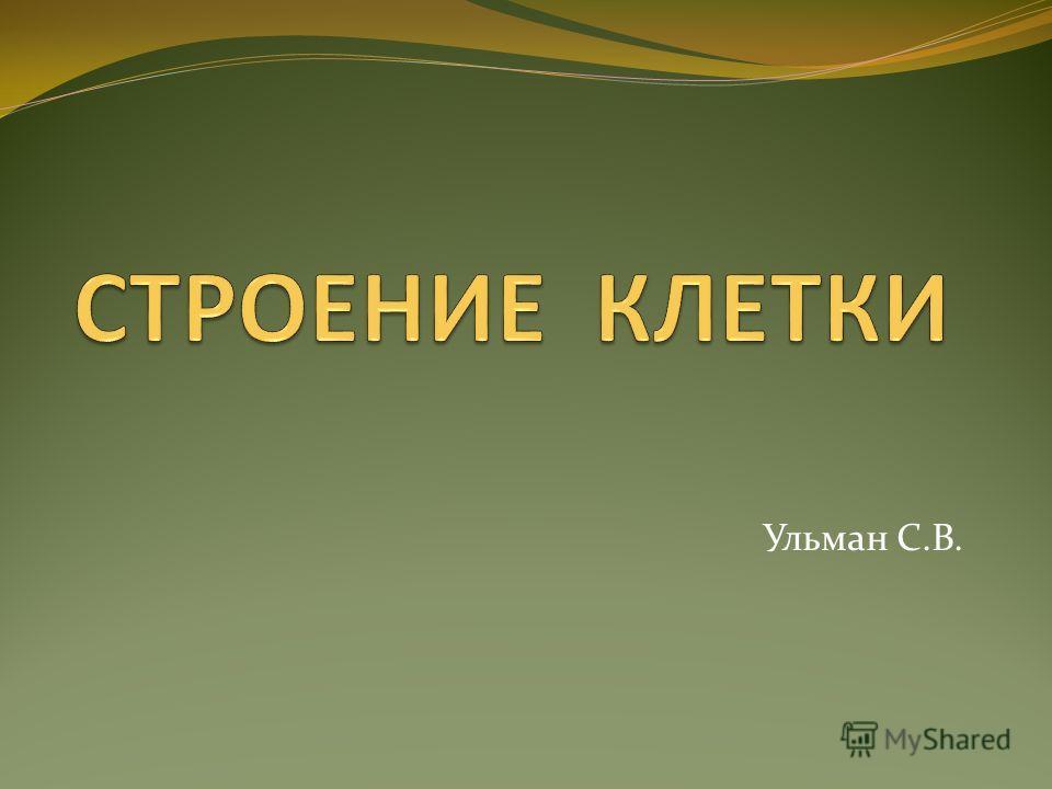 Ульман С.В.