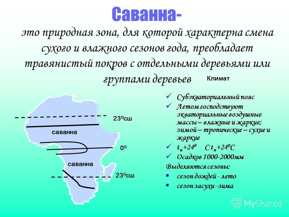 Саванна- это природная зона, для которой характерна смена сухого и влажного сезонов года, преобладает травянистый покров с отдельными деревьями или группами деревьев Климат Субэкваториальный пояс Летом господствуют экваториальные воздушные массы – вл