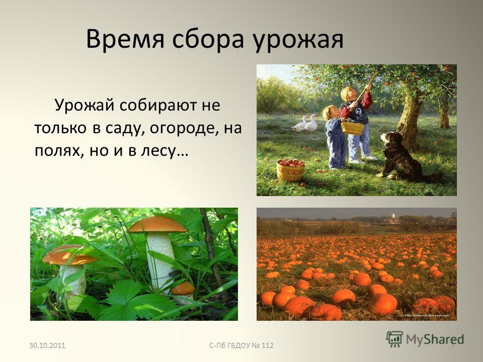 Золотая осень сбор урожая картинки
