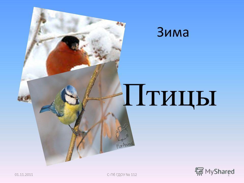 Зима 01.11.2011С-Пб ГДОУ 1121 Птицы