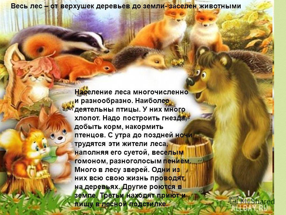 Население леса многочисленно и разнообразно. Наиболее деятельны птицы. У них много хлопот. Надо построить гнезда, добыть корм, накормить птенцов. С утра до поздней ночи трудятся эти жители леса, наполняя его суетой, веселым гомоном, разноголосым пени
