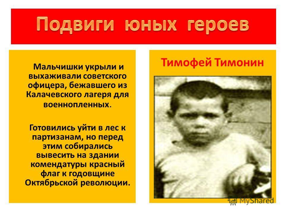 Мальчишки укрыли и выхаживали советского офицера, бежавшего из Калачевского лагеря для военнопленных. Готовились уйти в лес к партизанам, но перед этим собирались вывесить на здании комендатуры красный флаг к годовщине Октябрьской революции. Тимофей