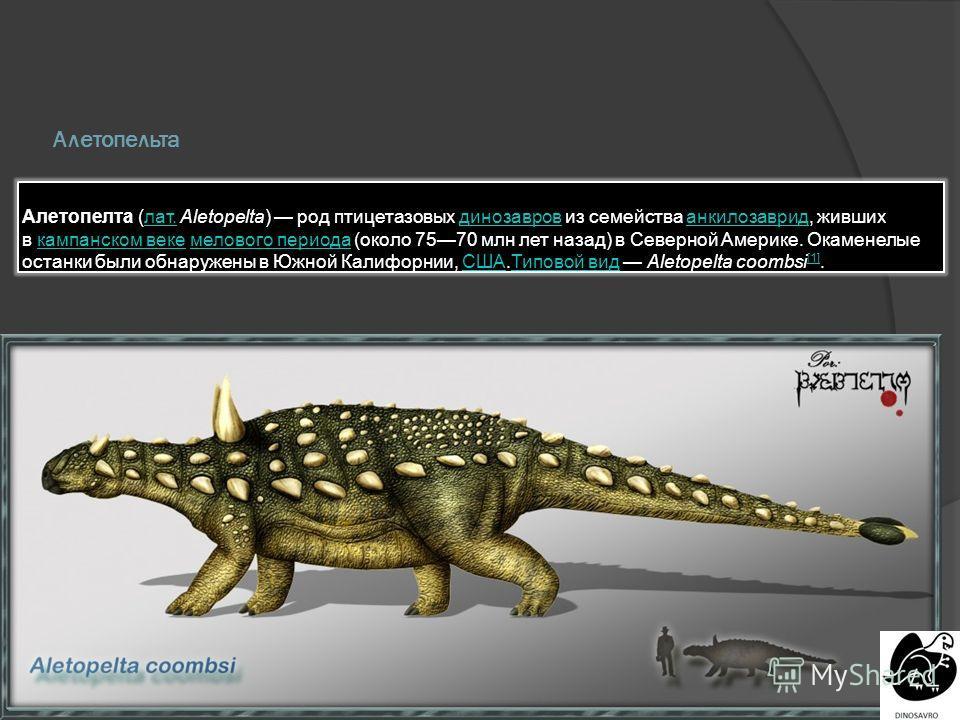 Алетопельта Алетопелта (лат. Aletopelta) род птицетазовых динозавров из семейства анкилозаврид, живших в кампанском веке мелового периода (около 7570 млн лет назад) в Северной Америке. Окаменелые останки были обнаружены в Южной Калифорнии, США.Типово
