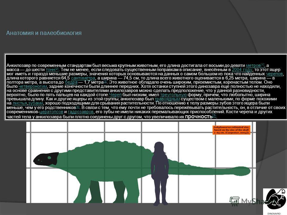 Анатомия и палеобиология Анкилозавр по современным стандартам был весьма крупным животным, его длина достигала от восьми до девяти метров [1], а масса до шести тонн [2]. Тем не менее, если следовать существенным поправкам в описание, внесённым в 2004