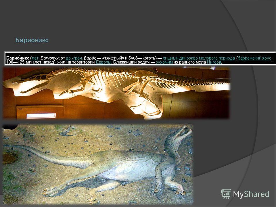 Барионикс Барио́никс (лат. Baryonyx; от др.-греч. βαρύς «тяжёлый» и νυξ коготь) хищный динозавр мелового периода (барремский ярус, 130125 млн лет назад), жил на территории Европы. Ближайший родич зухомим из раннего мела Нигера.лат.др.-греч.хищный дин