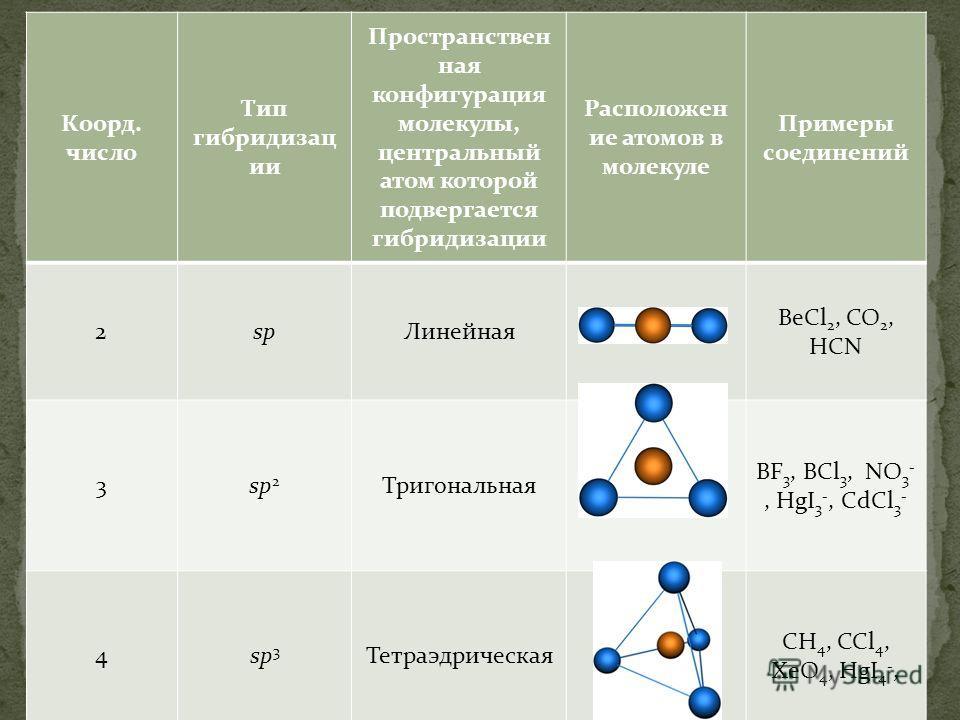 Коорд. число Тип гибридизац ии Пространствен ная конфигурация молекулы, центральный атом которой подвергается гибридизации Расположен ие атомов в молекуле Примеры соединений 2spЛинейная BeCl 2, CO 2, HCN 3sp 2 Тригональная BF 3, BCl 3, NO 3 -, HgI 3