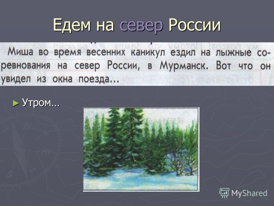 Едем на север России Утром… Утром…
