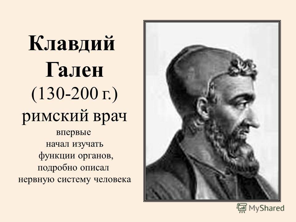 Клавдий Гален (130-200 г.) римский врач впервые начал изучать функции органов, подробно описал нервную систему человека