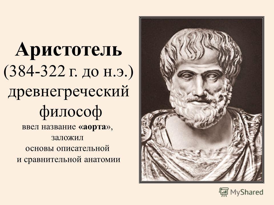 Аристотель (384-322 г. до н.э.) древнегреческий философ ввел название «аорта», заложил основы описательной и сравнительной анатомии